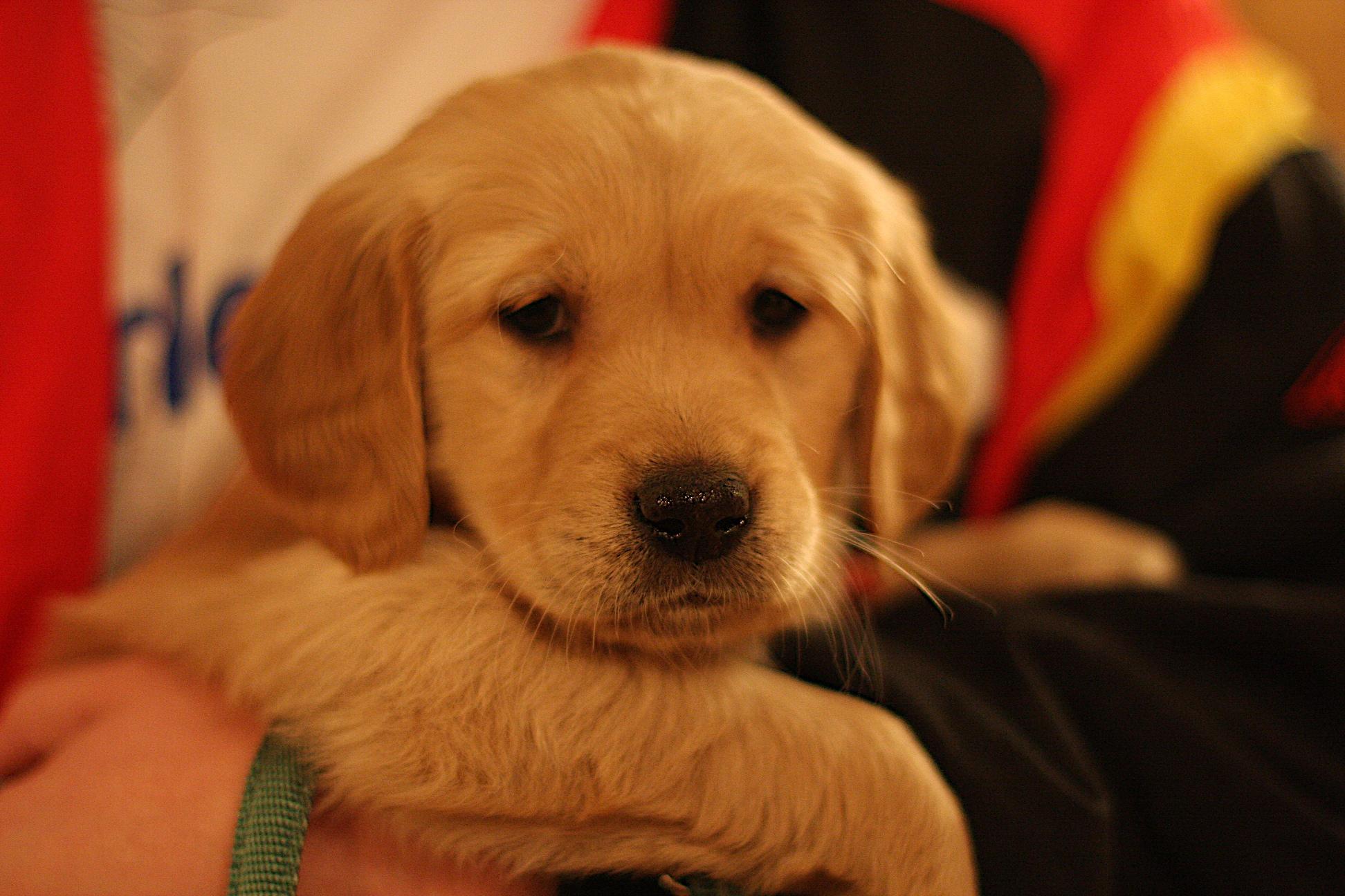 Meet Kasey!